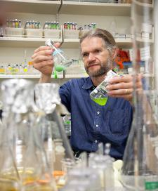 Virus Discovery Could Impact HIV Drug Research