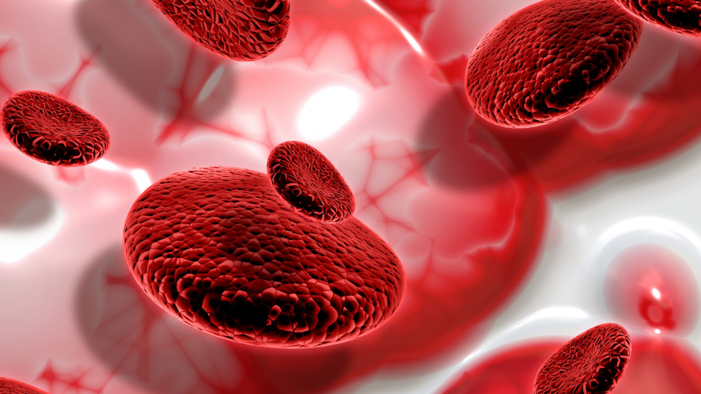 3D render of blood cells on abstract background
