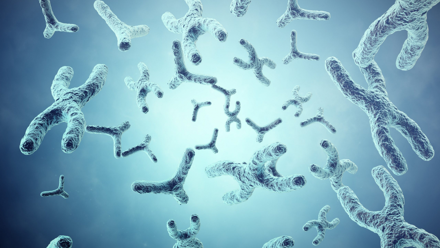 XY-chromosomes on grey background, scientific and biology concept with depth of field effect. 3d illustration.