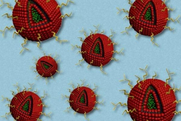 Nanoparticles Take on Brain Cancer